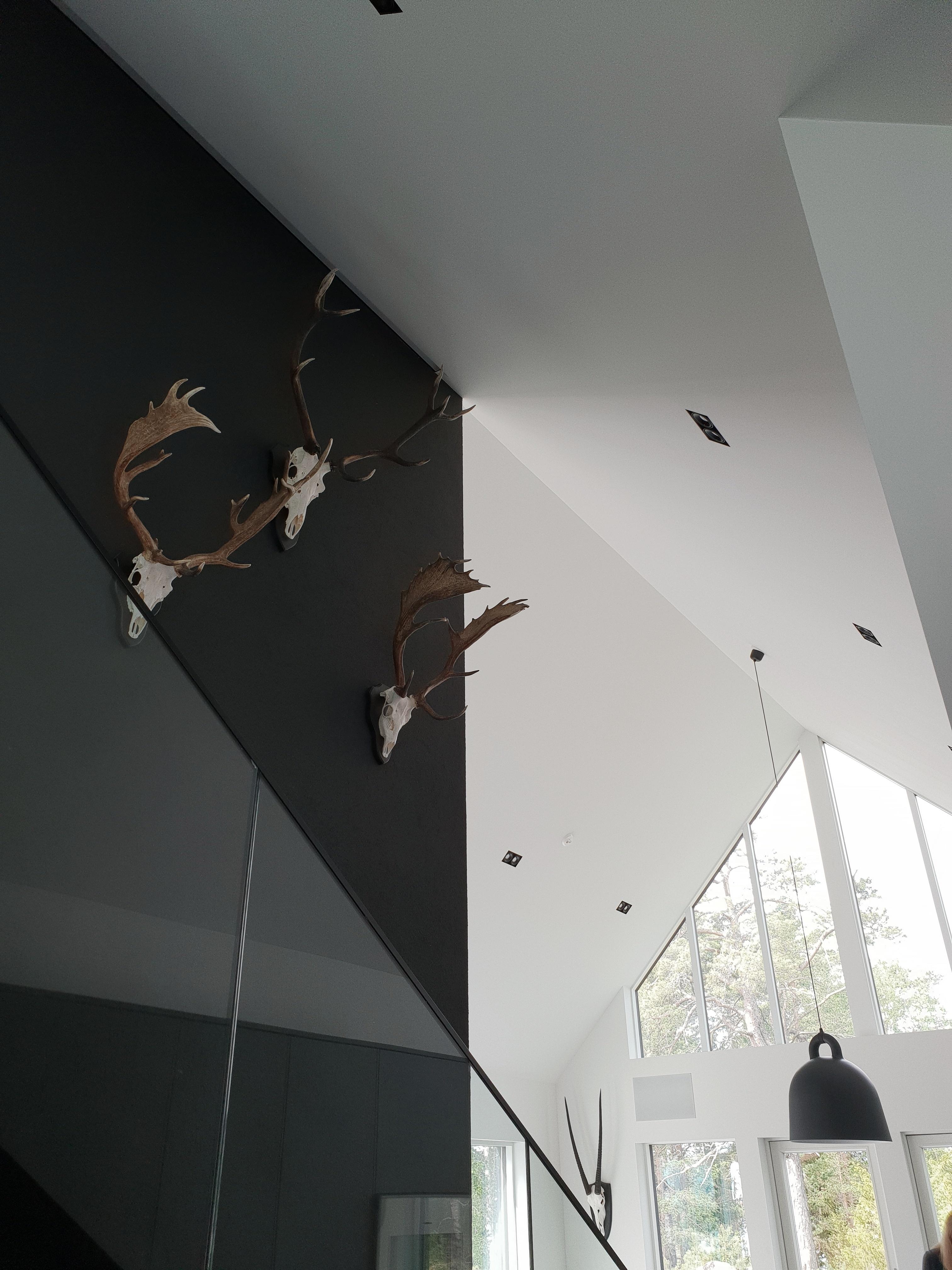 Taloesittely-Sunhouse-Saaristolaistalo-moderni